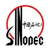 Власти Китая предварительно одобрили IPO розничного подразделения Sinopec