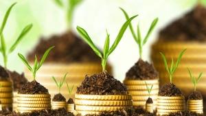 Золотой пай. Фонды драгметаллов показали в летние месяцы самую высокую доходность